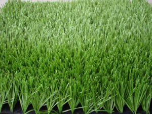 Outdoor Synthetic Turf for Soccer Field pictures & photos