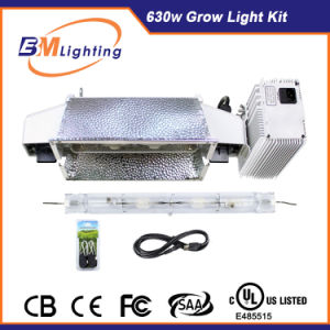 Hydroponics Growing Systems 630W CMH Double Ended 1000 Watt HPS De HID Grow Light Kits with UL Approve pictures & photos