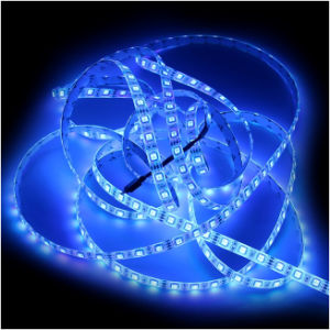 IP65 Flexible LED Strip Light 7.2W SMD (EW-SLS5050-30WWS8Y) pictures & photos