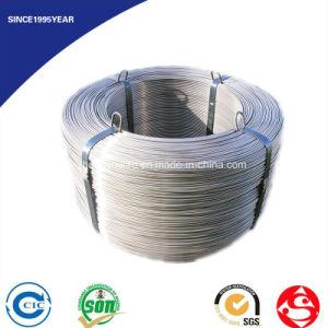 JIS G 3521 Round Spring Steel Wire pictures & photos