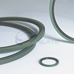 BNS Rotary Seals pictures & photos