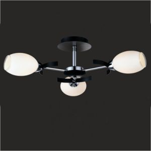 Chandeliers Ceiling Lights pictures & photos
