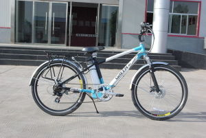 En15194 Electric Bicycle (L1-A)