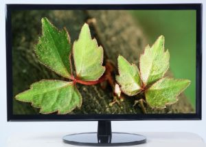 21.5 Inch Ultrathin LED Monitor pictures & photos