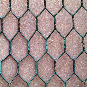 Good Quality Galvanized/PVC Coated Gabion Box Wire Mesh (Factory) pictures & photos