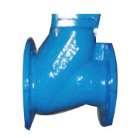 Cast Iron/Ductile Iron Flanged Ball Check Valves pictures & photos