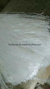E-Glass Glassfiber for Making Gypsum Cornice pictures & photos