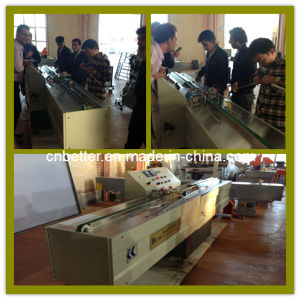 Double Glazing Glass Production Line / China Window Door Double Glazing Glass Machine (JT01) pictures & photos