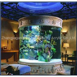 Acrylic Fish Aquairum pictures & photos