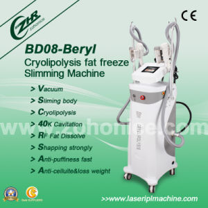 Professional Body Sculpting Slimming Cryolipolysis Machine pictures & photos