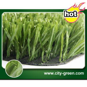 Artificial Turf for Football Ground (50S15N15G4)