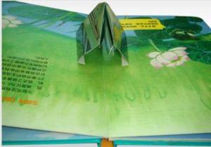 Children′s Books - 7