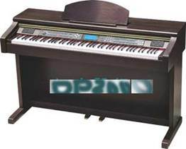 Electronic Keyboard (DP2000)