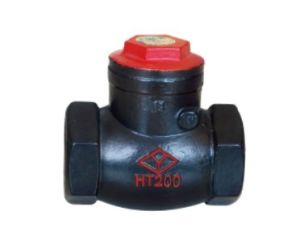 Screw End Swing Check Valve (H14T-16) pictures & photos