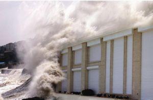 Hurricane Shutter pictures & photos