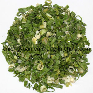 Dried Onion Leek Flakes with Good Quality pictures & photos