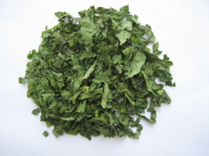 Dehydrated Spinach Flake pictures & photos