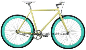 Flat Bar Fixed Gear Bike Flip-Flop (AB13PR-2701) pictures & photos