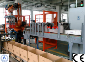 Fully Automatic Box Filling Machine for The Filling Line
