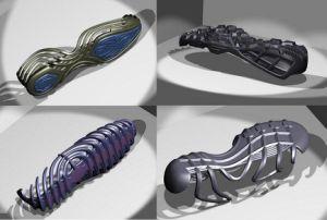 Shoe Mould (001)