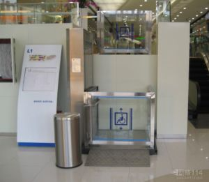 High Quality Wheelchair Lift for Disabled Person pictures & photos