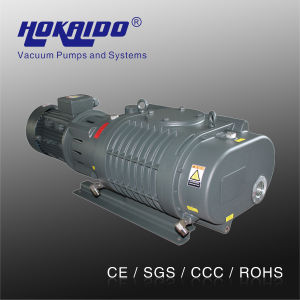 Vacuum Coating Chamber Used Hokaido Roots Vacuum Pump (RV1100) pictures & photos