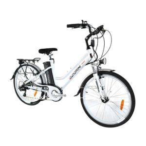 Italian Manufacturer En15194 250W Electric Bicycle (TDF03Z)
