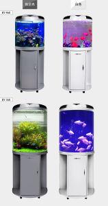 Hot Selling Classic Acrylic Half Round Aquarium pictures & photos