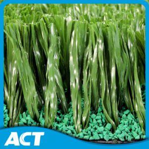 Football Soccer Grass Artificial Grass pictures & photos