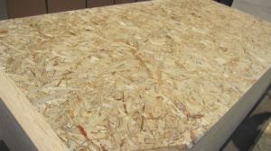 Best Price 6mm, 8mm OSB for Chile Markets
