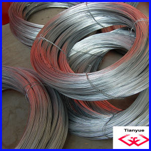Electro Galvanized Wire (TYD-071) pictures & photos