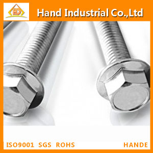 Stainless Steel 304 Hex Flange Bolts pictures & photos