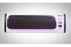 Mini Speaker (PR-300)