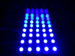 DC12V 5050 5LED Module Wateproof White Light pictures & photos