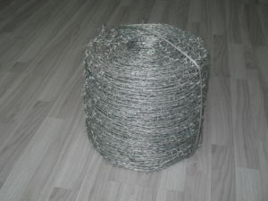 Hot Dipped Galvanized Double Strand Barbed Wire in China pictures & photos