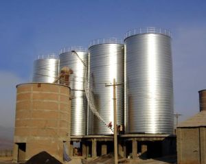 Steel Silo for Cement Plant