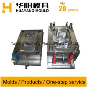 Plastic PP Container Mould (HY220) pictures & photos