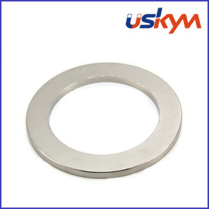 Ring Magnet / Strong Magnet / NdFeB Magnet pictures & photos