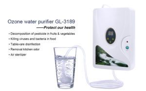Home Kitchen Ozone Water Purifier for Fruit and Vegetables Cleaning pictures & photos