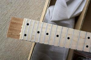 Hanhai Music / Electric Guitar Kit with Whole Hardware / DIY Guitar pictures & photos