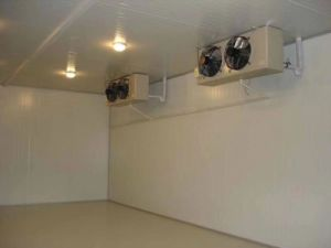 Cold Room for Vegetable and Meat Ce Approved pictures & photos