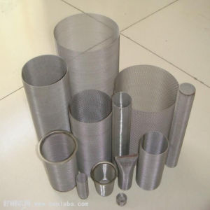 High Quality Galvanized Wire Mesh pictures & photos