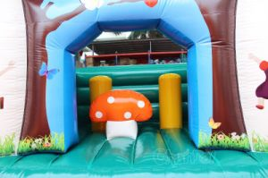 Mushroom Kids Inflatable Bouncy House Chb256 pictures & photos