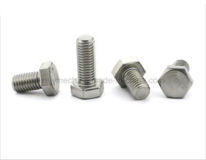 Stainless Steel Ss304 Bolts/Hex Bolts/Hexagon Head Bolts pictures & photos