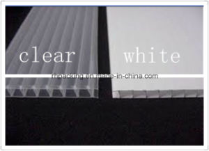 Transparent or White PP Plastic Sheet, Correx, Corflute, Coroplast Manufacturer pictures & photos