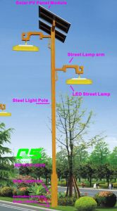 WPSRR-8906 3~15m Municipal Road Hot DIP Galvanized Steet Light Pole style pictures & photos