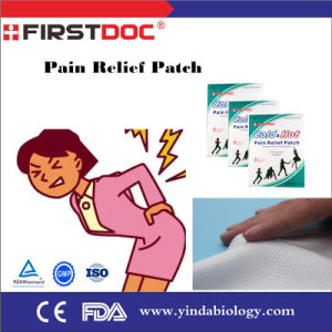 Transdermal Medicated Adhesive Patch for Capsicum Pain Relief Plaster pictures & photos