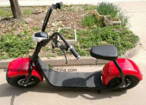 Latest Electric Scooter 800W Citycoco Scooter pictures & photos