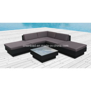 Wicker Furniture Rattan Sofa Set for Garden with Aluminum Frame (9509-A) pictures & photos