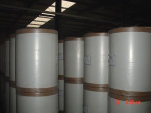 E Glass Fiberglass Roofing Tissue S-RM90g pictures & photos
